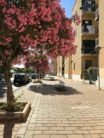 The center city of Agrigento!